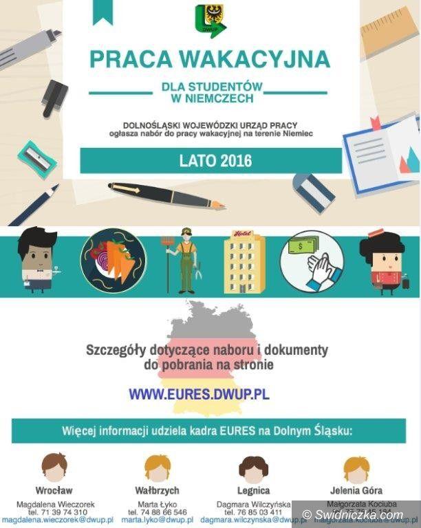 Świdnica/Region: Oferta dla studentów