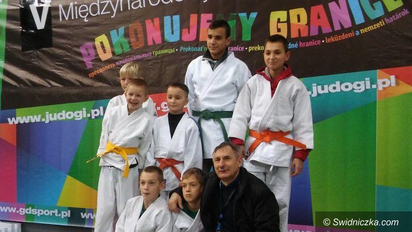 Strzegom: Judocy Startu w formie
