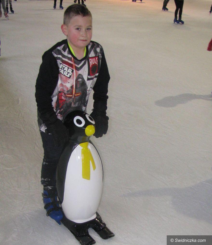 Świdnica: Pingwinki czekają na najmłodszych