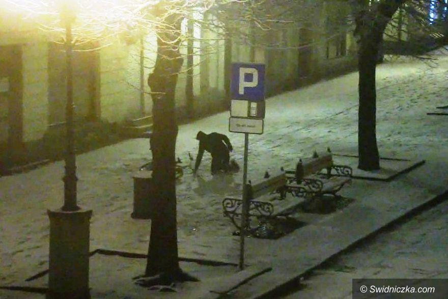 Świdnica: Nocny cyklista