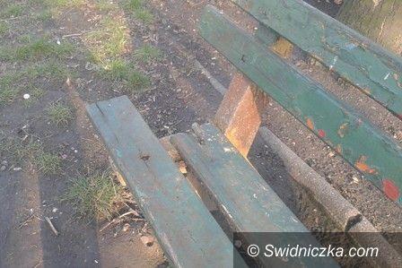 Świdnica: Ławki do naprawy