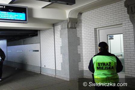 Świdnica: Pomylił tunel z toaletą