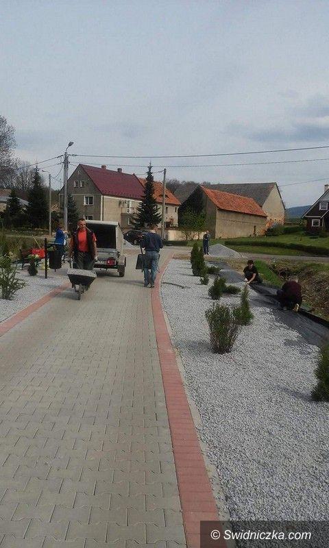 Marcinowice: Proekologiczne akcje w gminie Marcinowice