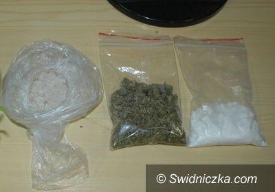 Świdnica: 935 porcji handlowych narkotyków nie trafi na rynek