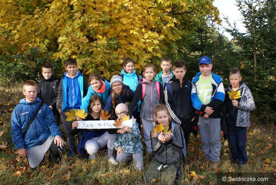 Lutomia Dolna: Minieuroland inspiruje szkołę w Lutomi