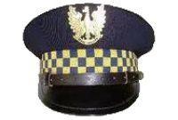 Świdnica: Tydzień z pracy strażników miejskich