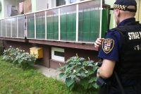 Świdnica: Trująca roślina pod balkonem