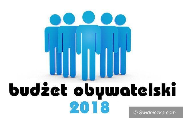 Świebodzice: Budżet obywatelski 2018 wybrany