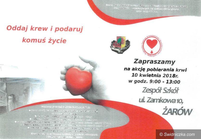 Żarów: Pierwsza wiosenna zbiórka krwi w gminie Żarów
