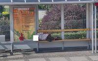 Świdnica: Leżakowanie w miejscach publicznych