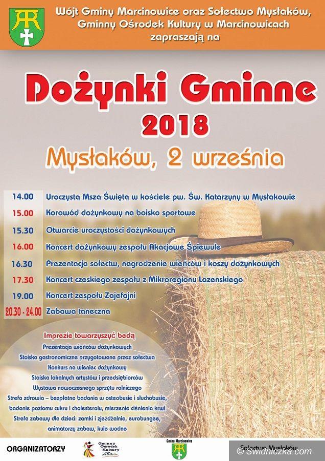 Mysłaków: Mysłaków gospodarzem Święta Plonów gminy Marcinowice