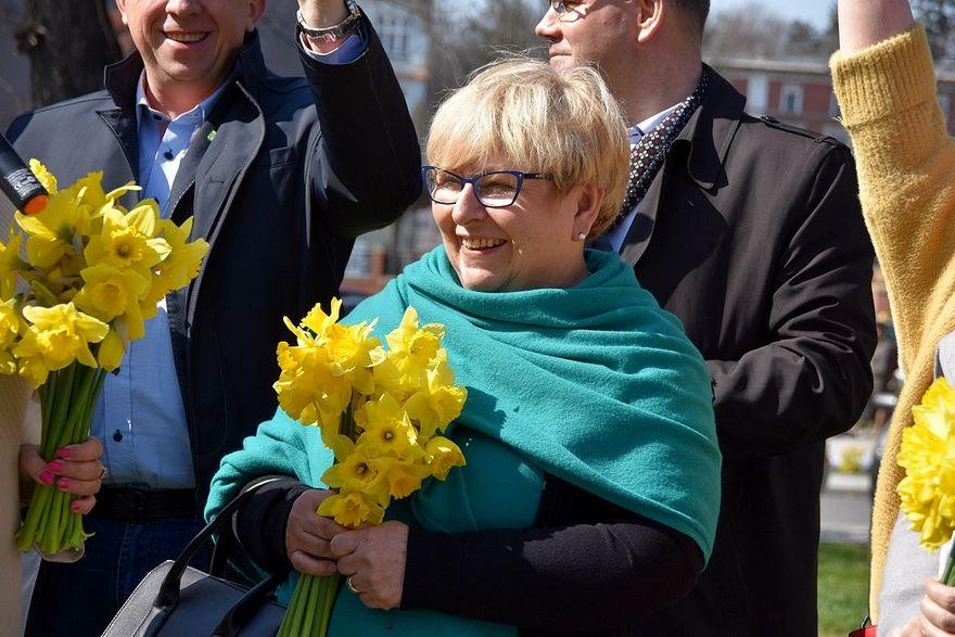 Świdnica: Żonkilowe pola nadziei zakwitły w Świdnicy