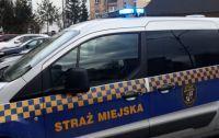 Świdnica: Nietypowe interwencje