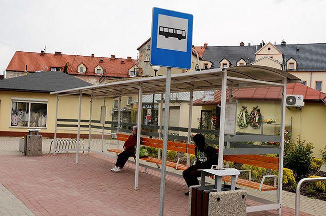 Gmina Żarów: Powracają kursy