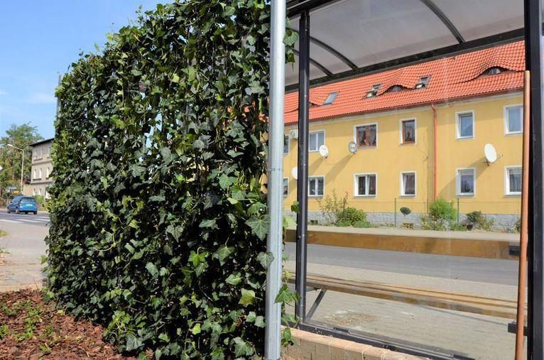 Żarów: Zielone przystanki