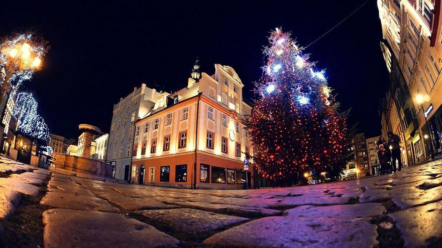 Świdnica: Dekoracje świąteczne