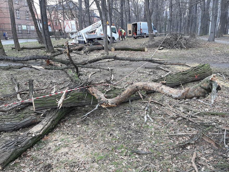Świdnica: Modernizują park